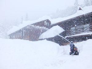 冬のかたくりの宿